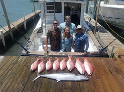 King and Red Snapper