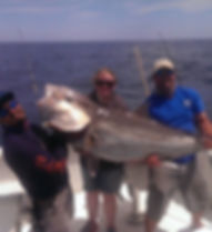 Greater Amberjack caught offshore fishing of South Padre Island.