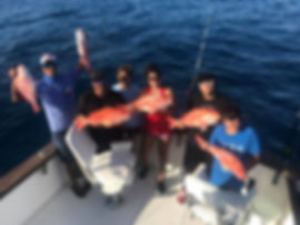 Red Snapper Miss Directed Deep Sea Fishing Charters
