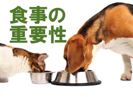 食事の重要性