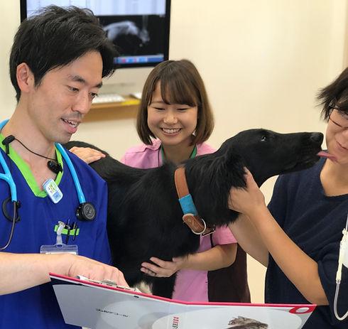 動物医療センター とよた犬と猫の病院 北原 獣医 イオンスタイル 豊田