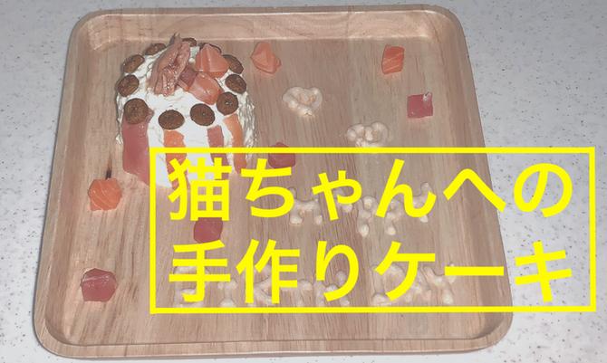 愛猫の誕生日!!