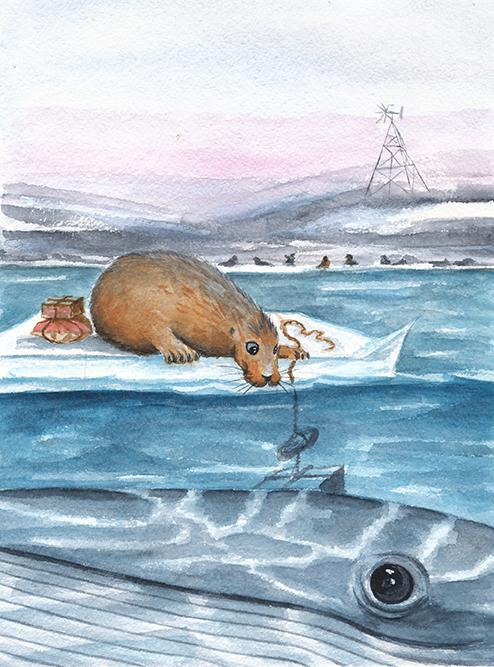 морской заяц и кит