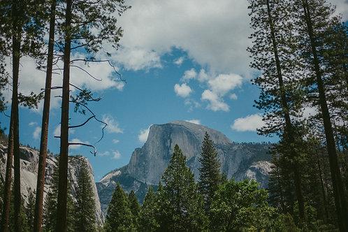 Yosemite II Postcard