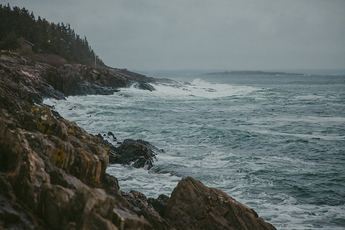 Salt and Pine; Maine Landscapes