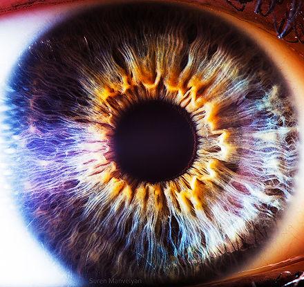 Auge Irisdiagnose Praxis Richter