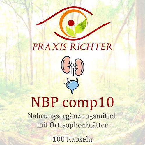 NBP comp10 Niere-Blase