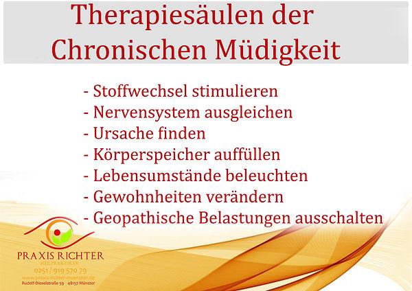 Therapiesäulen fatiguesyndrom chronische müdigkeit fatigue praxis richter münster Naturhei