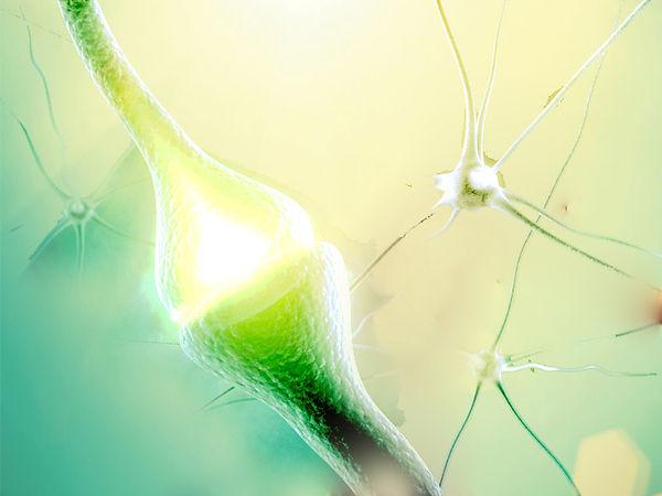 neurotransmitter parkinson praxis richter münster.jpg