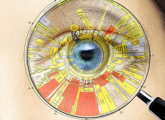 Irisdiagnose praxis Richter Auge.jpg