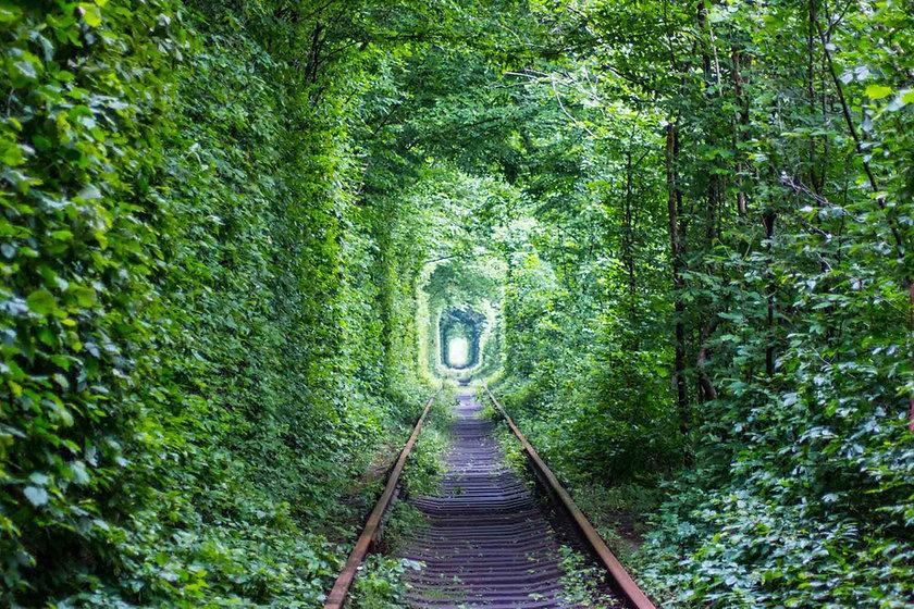 tunnel_darmsanierung_darm_praxis_richter