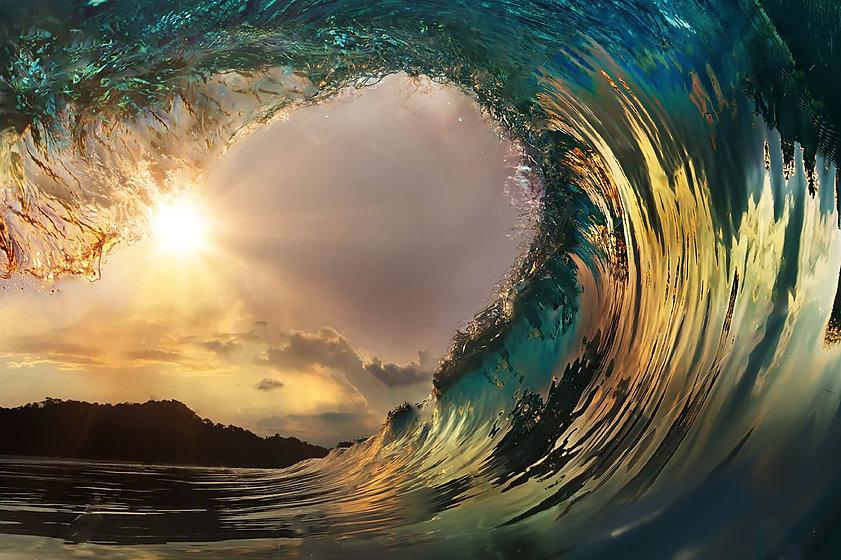 bioelektrische funktionsdiagnostik wave