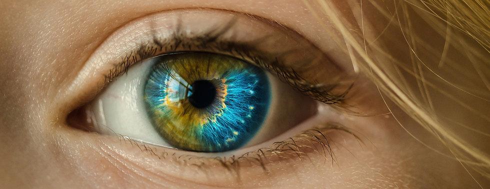Augendiagnose Irisdiagnose Praxis Richte