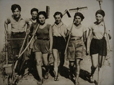IMG-1939 - Copy (2).JPG