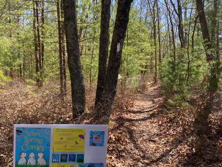 A NEW Storywalk for spring: When Spring Comes by Kevin Henkes.