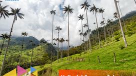 Valle del Cocora y Salento: Una aventura inolvidable.