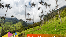 Valle del Cocora and  Salento: An unforgettable adventure.