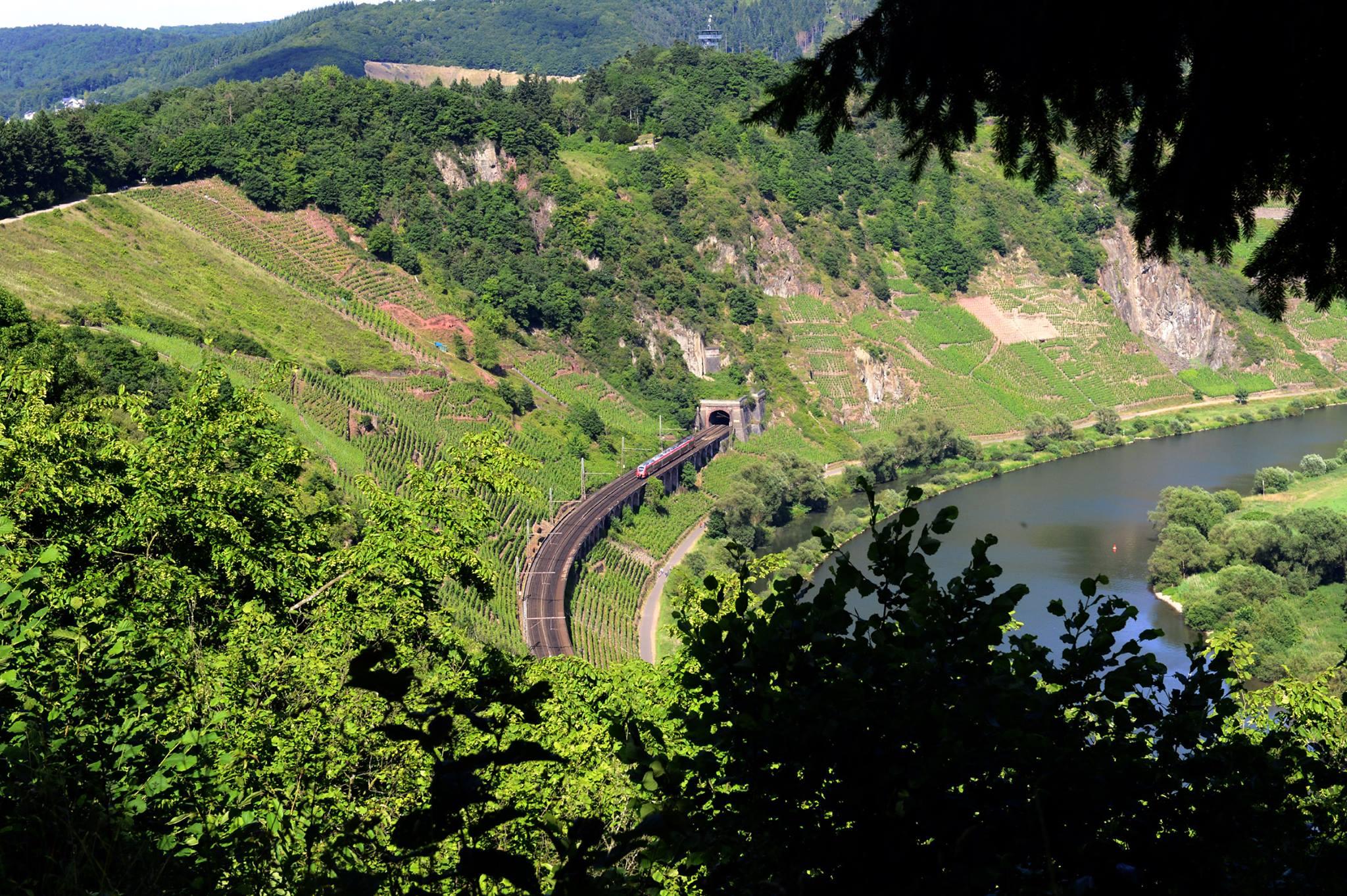 Viadukt2015