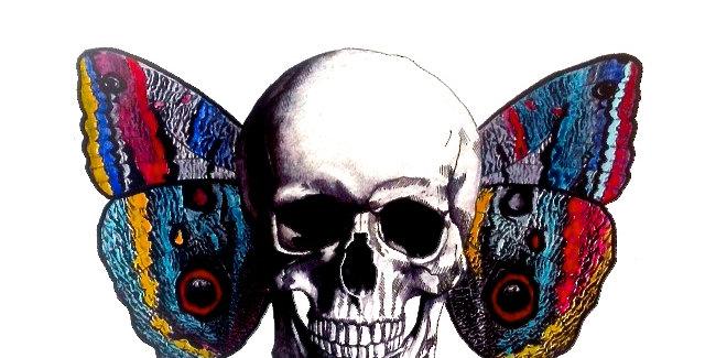 Butterfly Skull, 2013
