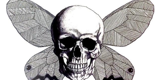 Moth Skull, 2013