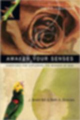 awaken senses cover.jpg