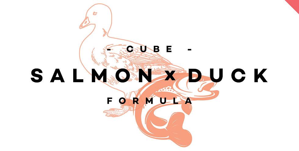 CUBE! - Salmon x Duck Formula (Carnivore)