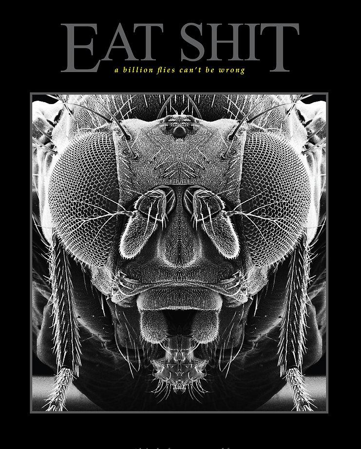 fly_poster.jpg