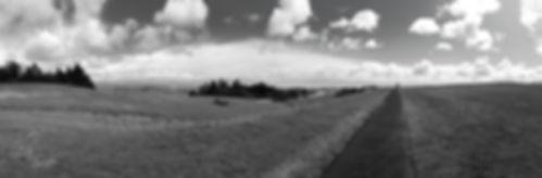 UCSC-2-sm_edited.jpg