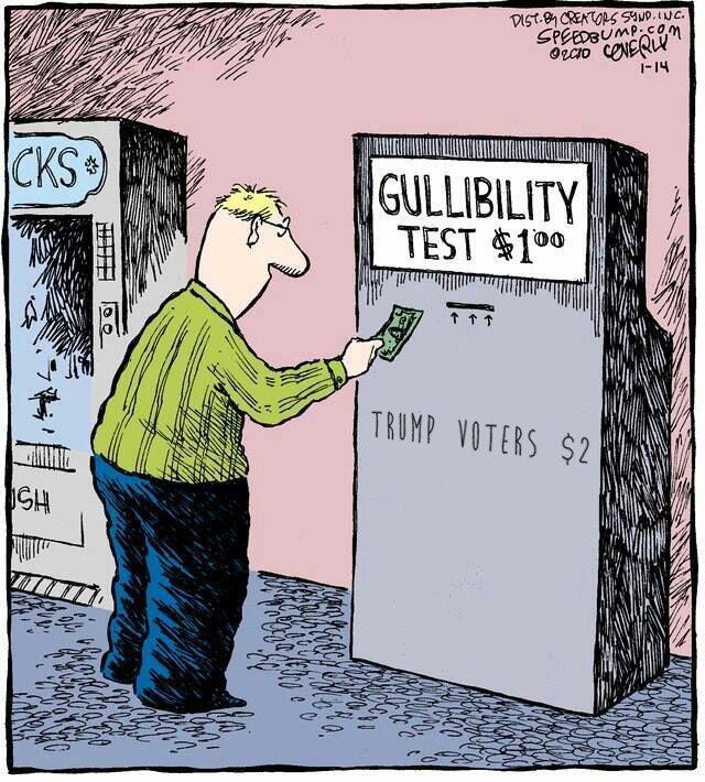 gullability.jpg
