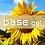 Thumbnail: eleblend base (20g)