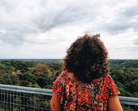museu da amazônia _uika