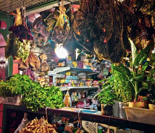 mercado adolpho lisboa_ até o tucupi tour.jpg