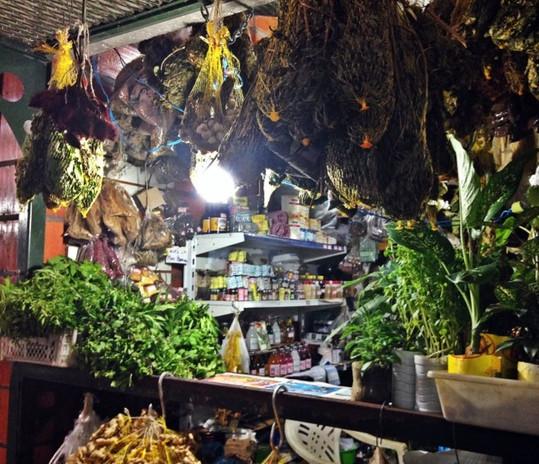 mercado adolpho lisboa_ até o tucupi tour