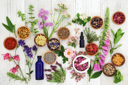 Natural herbal medicine selection with h