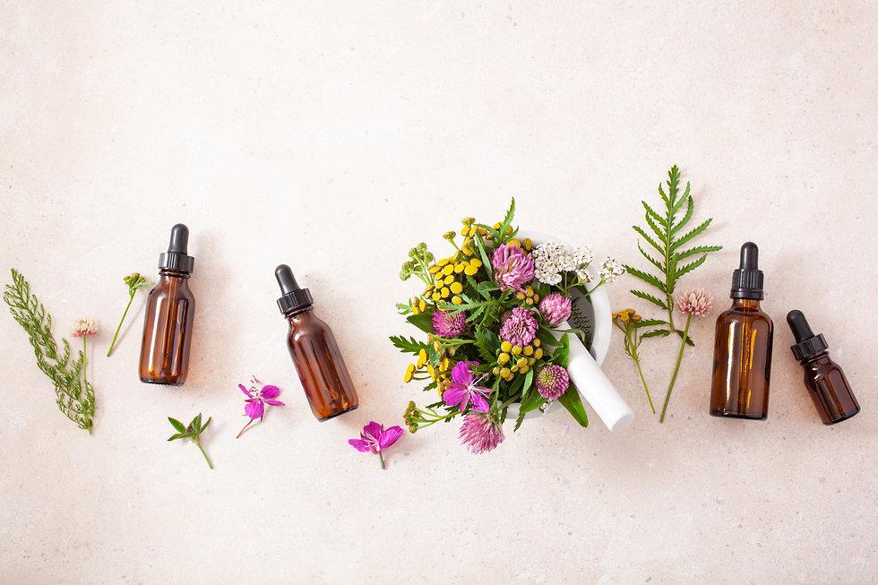 medical flowers herbs in mortar essentia