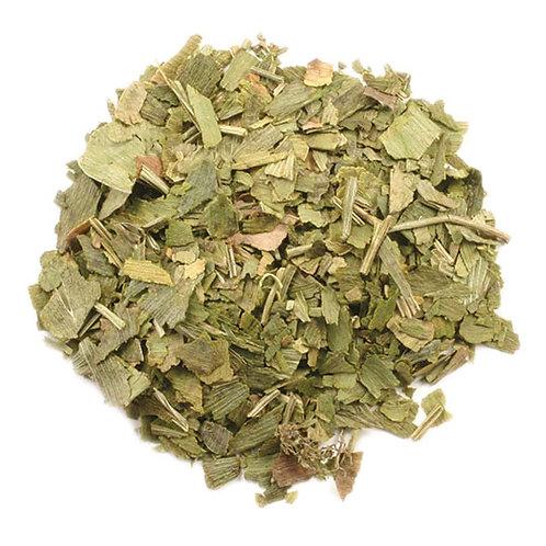 Ginkgo Biloba Leaf c/s