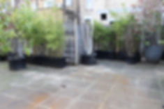 Dirty grey paving with old broken large plant pots containing trees and bushes