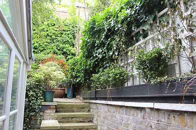 Overgrown garden with ivy climbing up a wall and broken steps