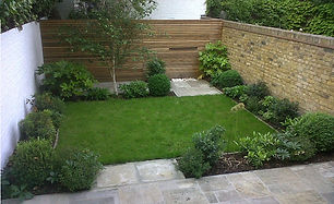 Small lawned garden with york stone patio and evergreen planting.