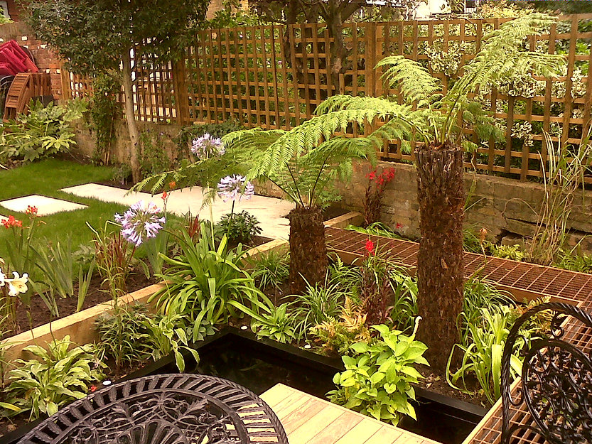 Tree ferns in a tropical stye garden, with a grod walkway leading through planting beds to a deck floating over a pond