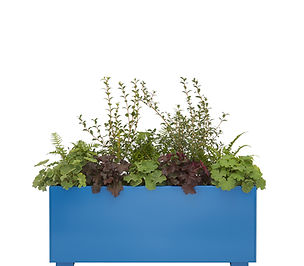 Planter 120 Blue.jpg