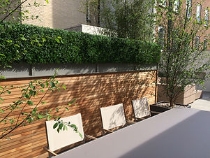 Roof Terrace with slatted cedar fencing and bushy green hedge
