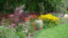 Mixed perennial flowers in a curved flowerbed against a low wooden fence