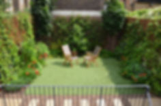 Artificial grass in a small garden with lots of evergreen climbers