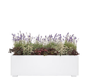 Planter 150 White.jpg