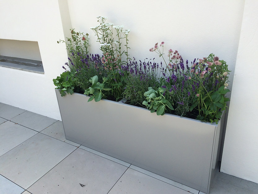 Grey metal powder-coated planter against a white rendered wall on a roof terrace garden.