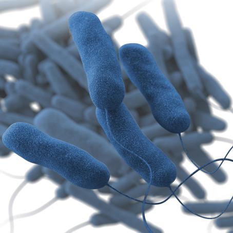 Legionellabestrijding in waterinstallaties