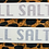 Thumbnail: ALL SALTY Decal