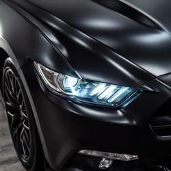 Satin Black Mustang