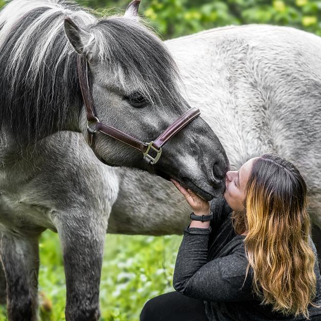 Pferdefotografie Kiel